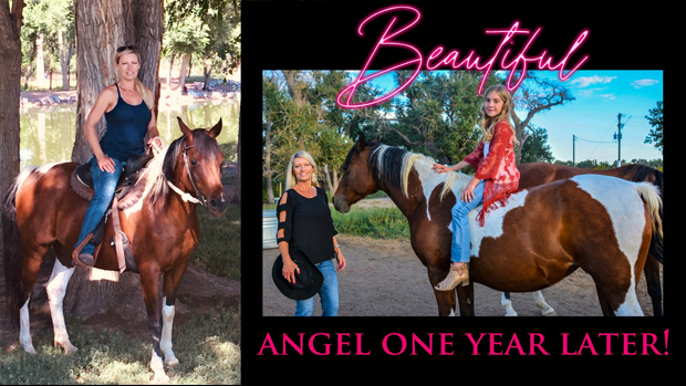 Rocky-Mountain-Girls-Hemp-Products---Equine-Hemp-Pellets-Testimonial-Angel-The-Horse